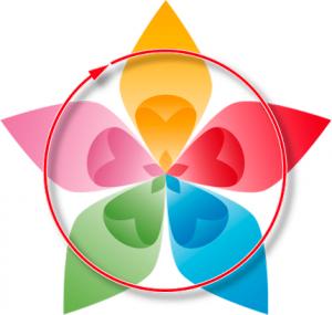 espiral 5 elementos